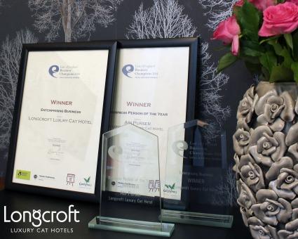 Awards Winner Longcroft Luxury Cat Hotel