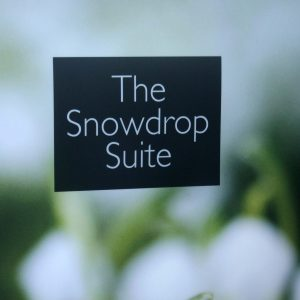 Longcroft Luxury Cat Hotel Snowdrop Suite