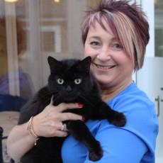 Longcroft Luxury Cat Hotel Cattery Luton