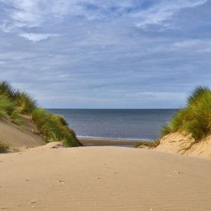 5 reasons to visit Formby