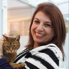 Longcroft Luxury Cat Hotel Barnet London Loria Collard