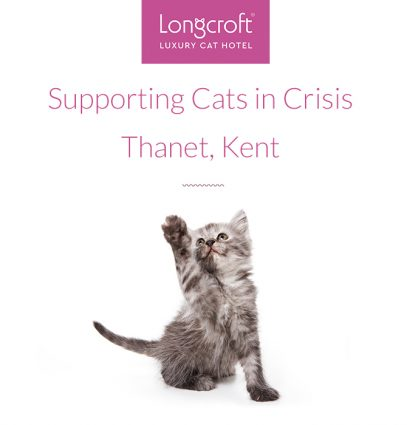 Cats In Crisis Thanet Kent