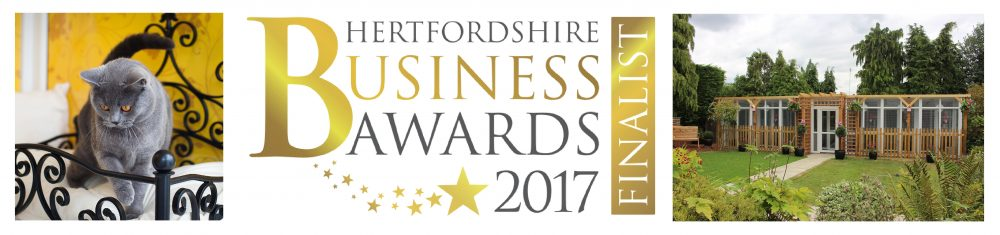 Herts Business Awards Winners | Longcroft | Luxury Cat Hotel Group