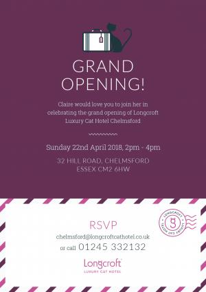 Longcroft Luxury Cat Hotel Chelmsford   Essex Grand Open Day Invite