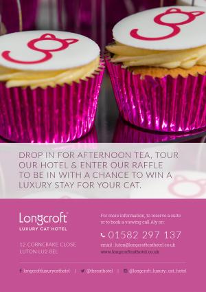 Longcroft Luxury Cat Hotel Luton Bedfordshire