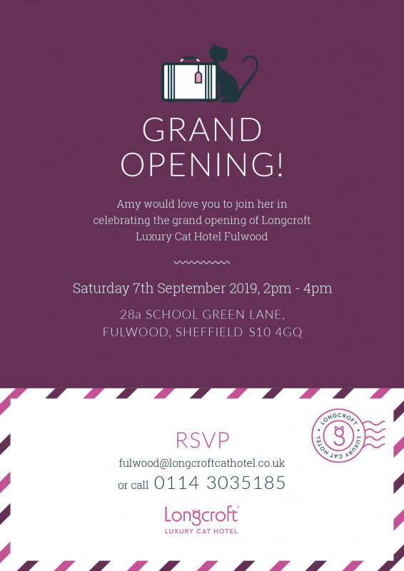 Grand Opening Longcroft Luxury Cat Hotel Fulwood Sheffield