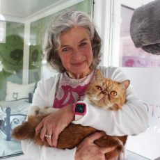Georgie Taylor-Darke | Longcroft Luxury Cat Hotel Romsey